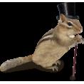 svijetlana - životinje - Animals