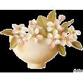 Pepeljugica - Cvijeće - Plants