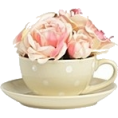 Danijela ♥´´¯`•.¸¸.Ƹ̴Ӂ̴Ʒ - Flowers - Items