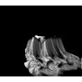 Lady Di ♕  - Fabric - Items