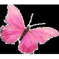 lilika lika - LIAH - BORBOLETA - Animals