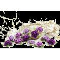 NeLLe - ružice - Plants