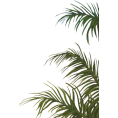 jessica - Plant - Plants