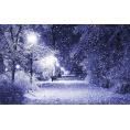 Pepeljugica - Zima - Nature