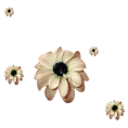 sanja blaevi - Flower Plants Beige - 