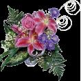 sandra24 - Flowers Pink Plants - Plants