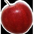 sandra24 - graf.elementi - Fruit
