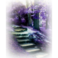 jessica - Stairs - Nature