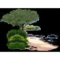 jessica - Beach - Nature