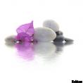 jessica - Rocks - Nature