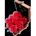 Doña Marisela Hartikainen - Roses - Plants