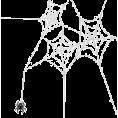 Doña Marisela Hartikainen - Spider - Animals