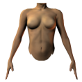 trendme.net - female torso front - Figure