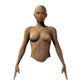 trendme.net - female front torso - Figure