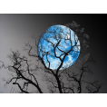 sandra24 - Blue Moon - My photos
