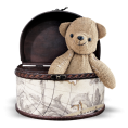 sandra24 - Bear in the box - Items