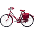 Anita An - Bicycle - Vehicles