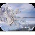 sanja blažević - Snow White - Nature