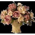 suza1607 - ruže - Plants