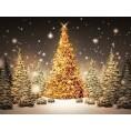 svijetlana - Božićno Dvrce - My photos