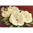 Tamara Z - Flowers - Plants