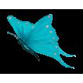 Tamara Z - Butterfly - Animals