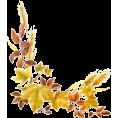 Tamara Z - Leafs - Plants