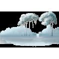 sanja blažević - Trees - Plants