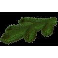 sanja blažević - Plants Green - Plants