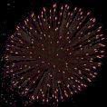 sanja blažević - Fireworks - Illustrations