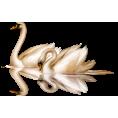sanja blažević - Swan - Animals