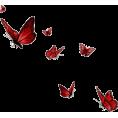sanja blažević - leptiri - Animals