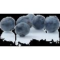 sanja blažević - Šljive - Fruit