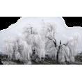 sanja blažević - Priroda - Nature