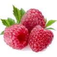 sanja blažević - Raspberry - Fruit