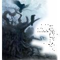 trendme.net - Drvo / Tree - Nature