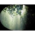 trendme.net - Kiša / Rain - Nature