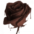 webmaster(s) @trendMe - Chocolate rose - Illustrations