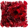 webmaster(s) @trendMe - Red Rose Pillow - Illustrations