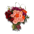 webmaster(s) @trendMe - Welcome Bouquet - Illustrations