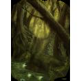 webmaster(s) @trendMe - swamp - Illustrations