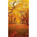 Bev Martin - Central Park in the fall - Background