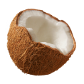 Lady Di ♕  - Coconut - Fruit