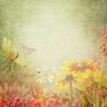 Mees Malanaphy - Flowers - Background
