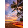 Bev Martin - Maui sunset - Фоны