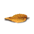 Pam  - leaves - Items